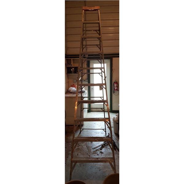 "95"" Step Ladder"
