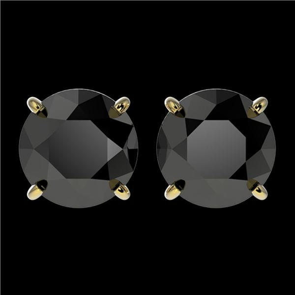 2.60 ctw Fancy Black Diamond Solitaire Stud Earrings 10k Yellow Gold - REF-43R2K