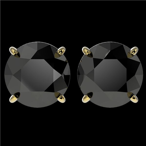 4 ctw Fancy Black Diamond Solitaire Stud Earrings 10k Yellow Gold - REF-68M8G