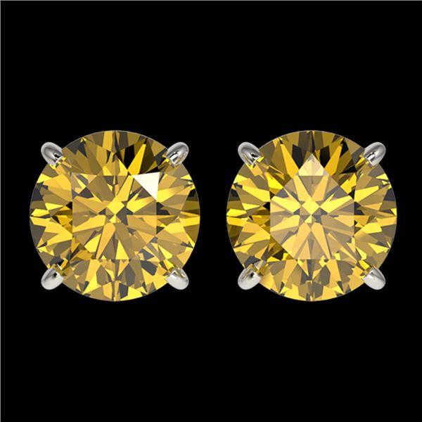 2.57 ctw Certified Intense Yellow Diamond Stud Earrings 10k White Gold - REF-349M8G