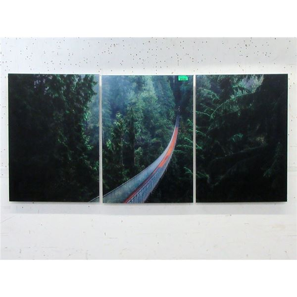 3 Piece Capilano Bridge Acrylic Wall Art