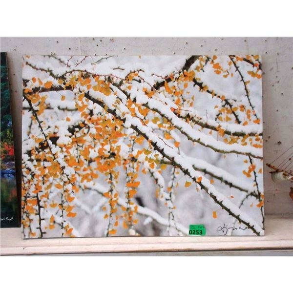 """New 24"""" x 18"""" Print on Board - Snowy Branches"""