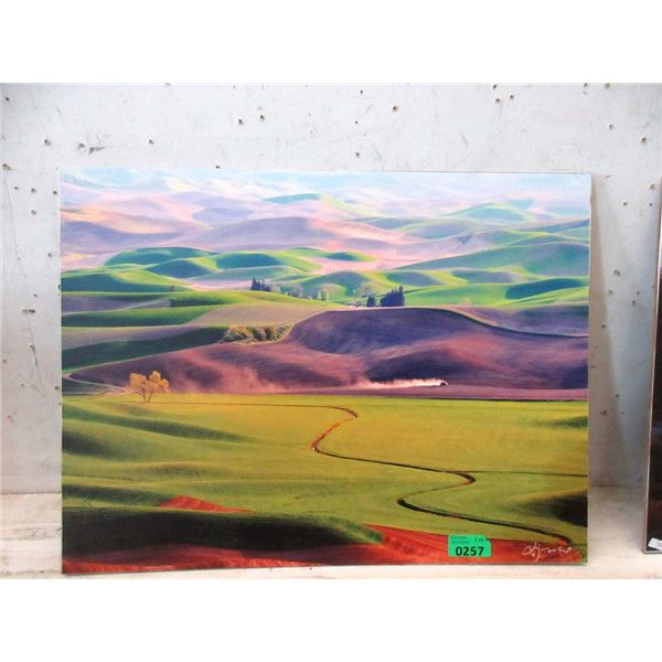"""New 24"""" x 18"""" Print on Board - Foothills"""