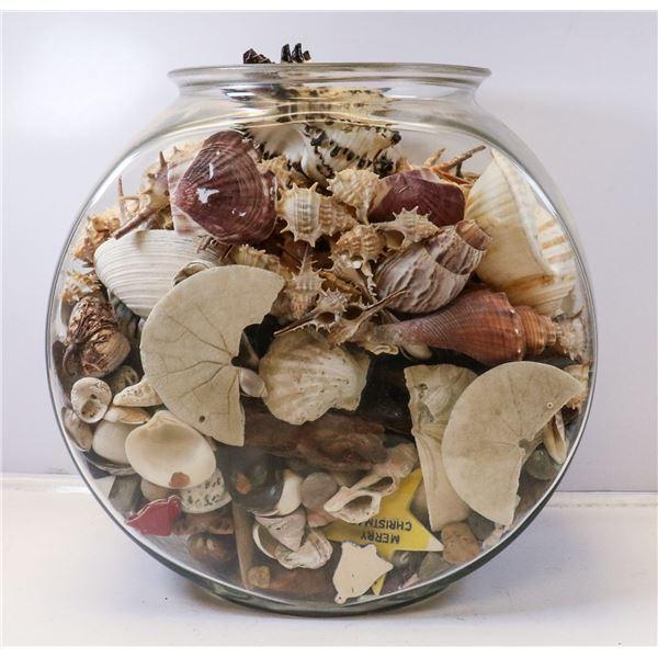 LARGE JAR FULL OF SEASHELLS