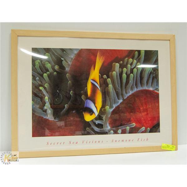 SECRET SEA VISIONS- ANEMONE FRAMED FISH
