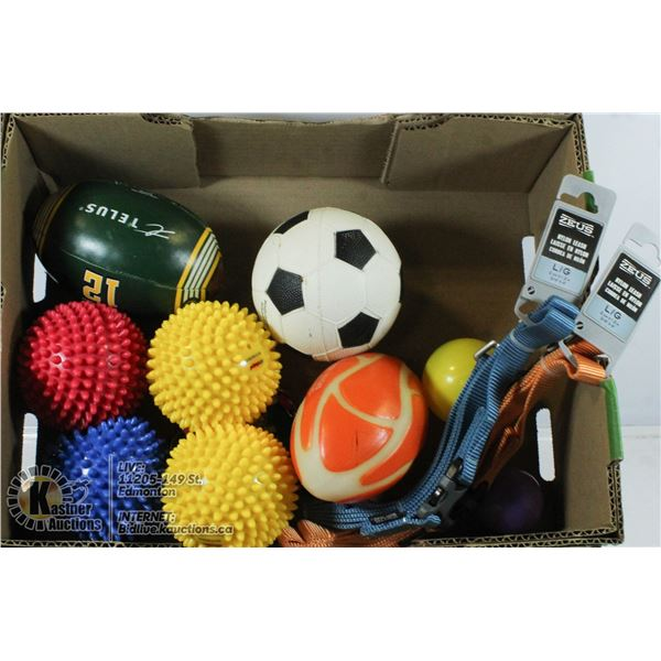 BOX OF DOG TOYS AND LEASHES