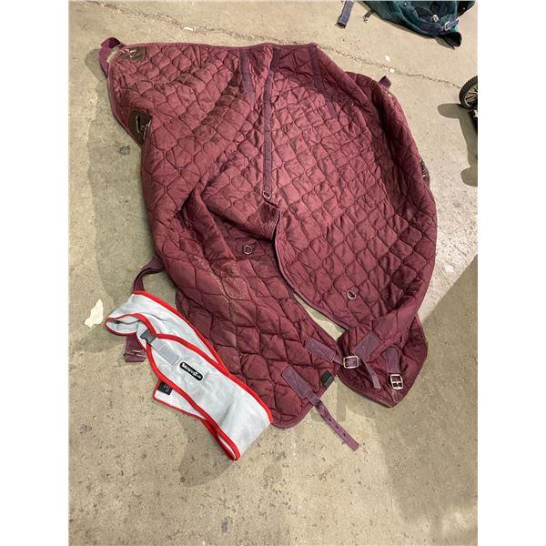 Snug rugs and horse blanket