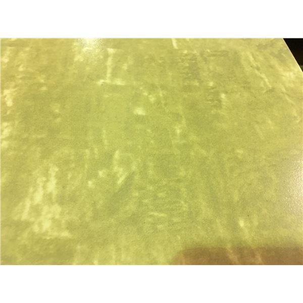919.7 SQ FT OF LEXUS INTELLIGENT  MARULA BROWN 300 X 300 CERAMIC WALL TILE