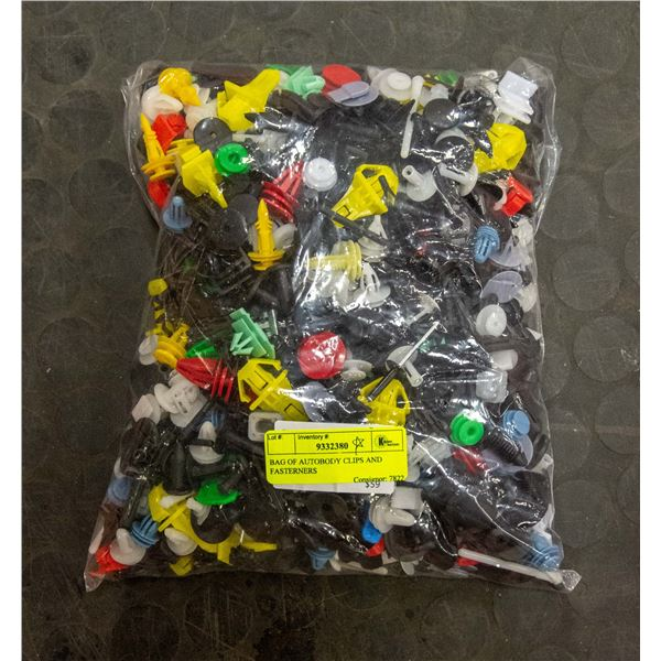 BAG OF AUTOBODY CLIPS AND FASTENERS