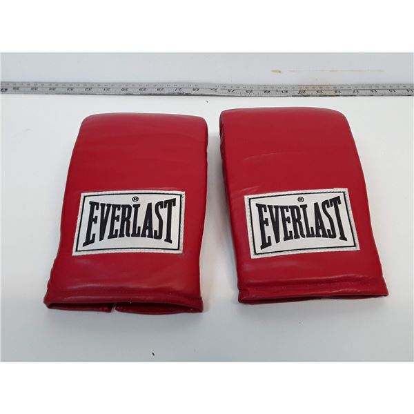 Everlast Boxing/Heavy Bag Gloves