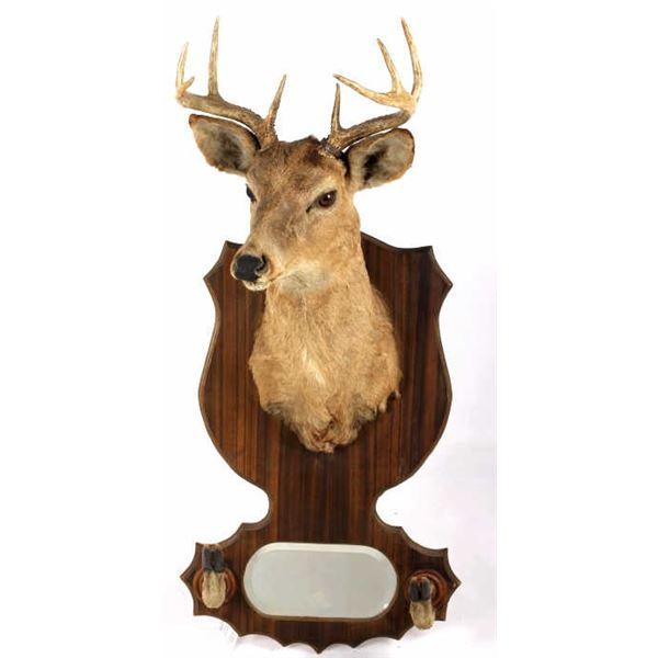 1942 Taxidermy Deer Mount with Hoof Rack & Mirror