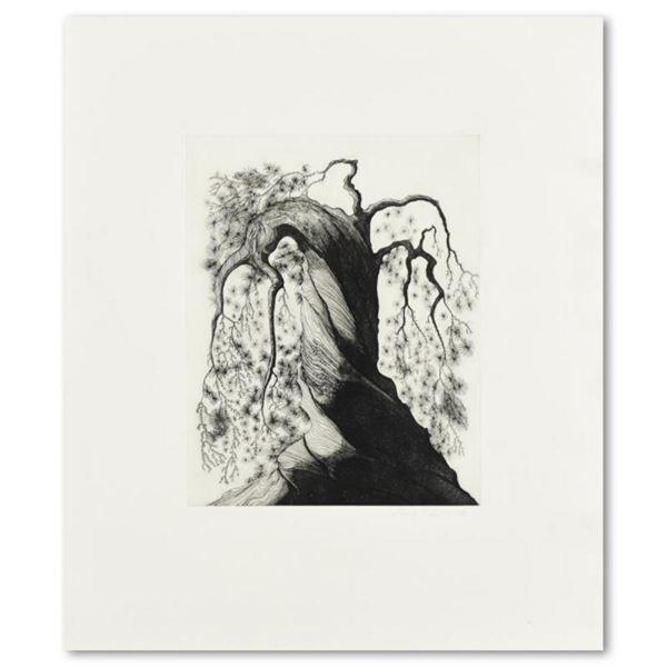 Norway Pine by Eyvind Earle (1916-2000)