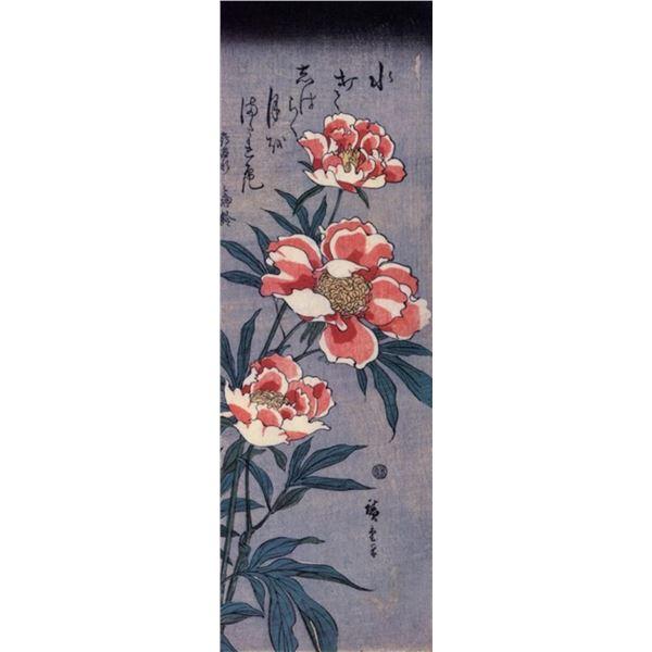 Hiroshig Peonies