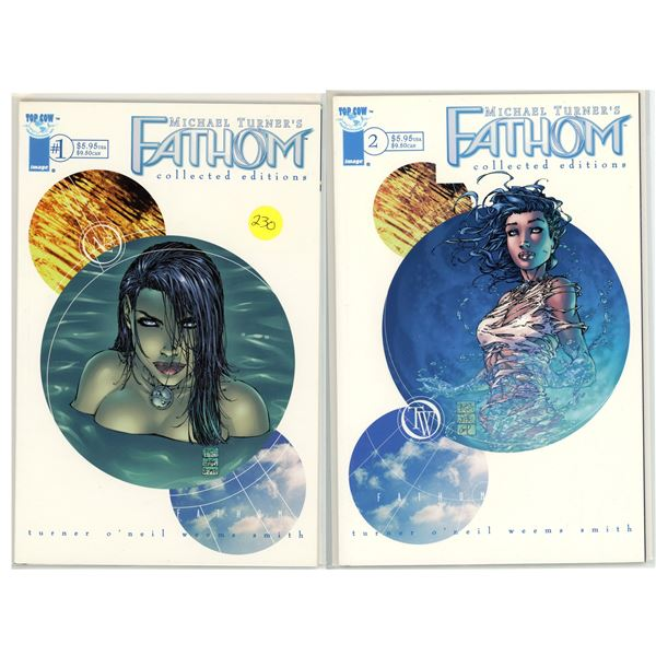Fathom Collected Editions #1 and 2 - Comic