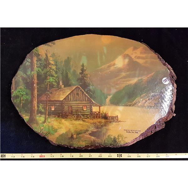 Live Edge Turtle Mountains Wood Plaque