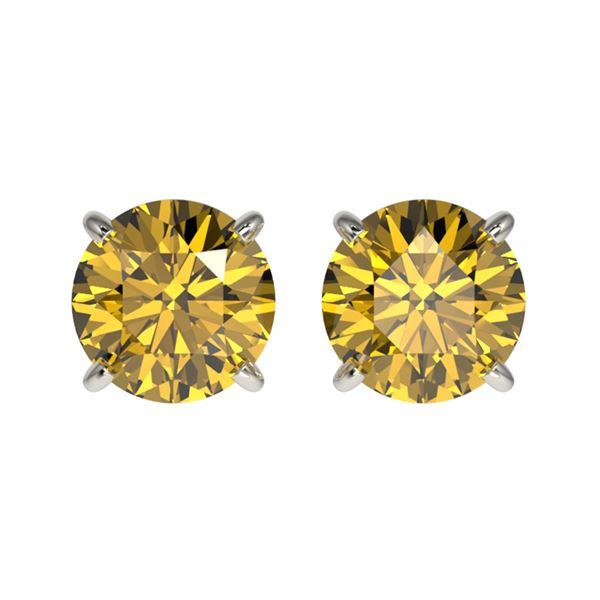 1.50 ctw Certified Intense Yellow Diamond Stud Earrings 10k White Gold - REF-157Y3X