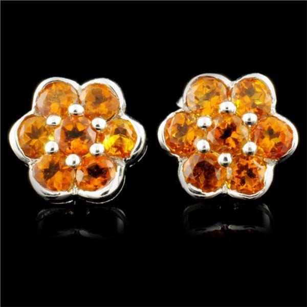 14K Gold 2.80ctw Garnet Earrings