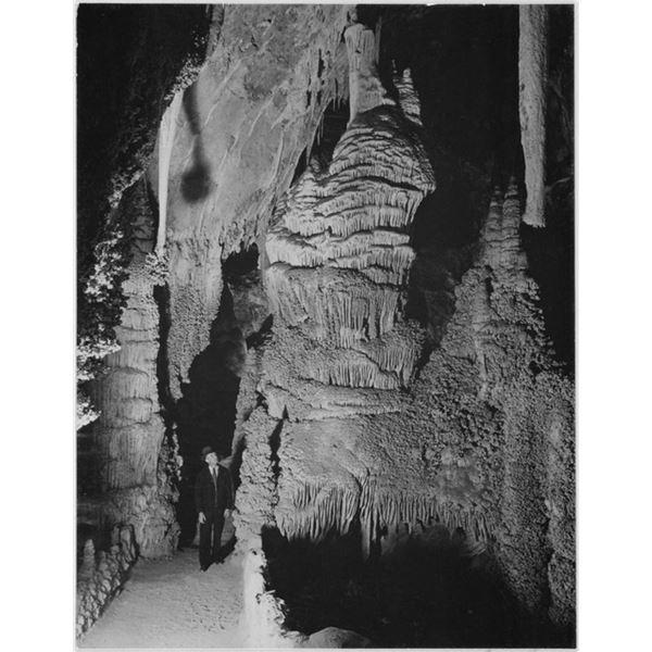 Adams - Carlsbad Caverns National Park New Mexico 2