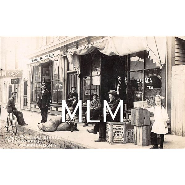 From Prairie Fires & Paper Moons Main St. Store Front Hammond, NY Photo Postcard