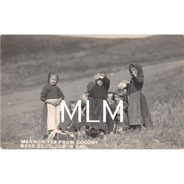 Children Mennonites from Colony near Scotland, South Dakota Photo Postcard