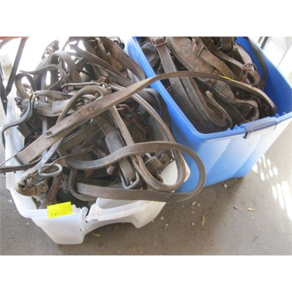 2 LG. BINS OF ASST. LEATHER HORSE HARNESSES AND TACK