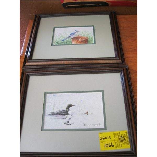 2 FRAMED PRINTS BY PETER SHEELER OF THE LOON AND THE BLUEJAY