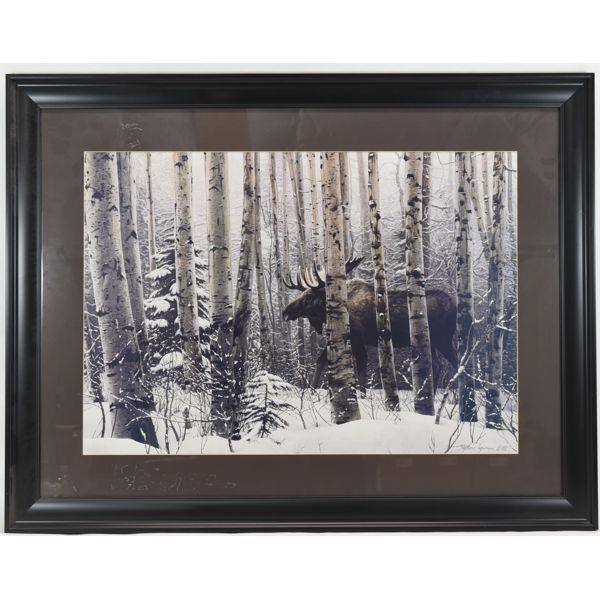 Bull Moose Print By Stephen Lyman 88'