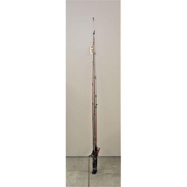 3 Fishing Poles & 2 Reels