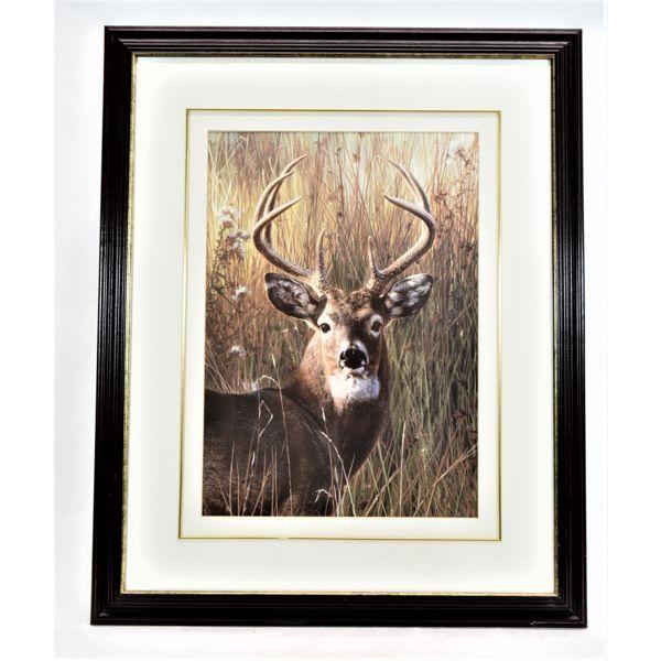 """Framed Print """"Power And Grace"""" Carl Brendars"""