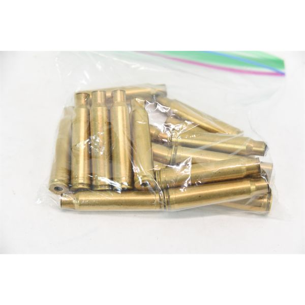 18 Pieces 338 Win Mag Fired Brass