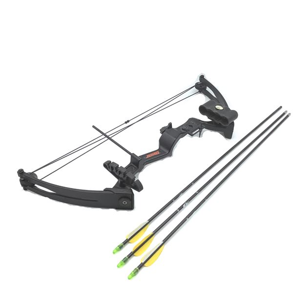 Bear Youth Compound Bow with Arrows