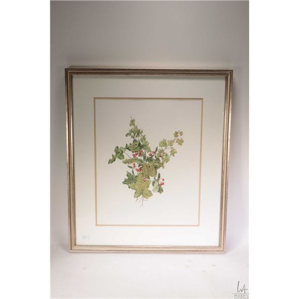 """Framed watercolour painting titled """"Cotoneaster and Ivy leaves"""" signed by artist Caren Heine, 16"""" X"""
