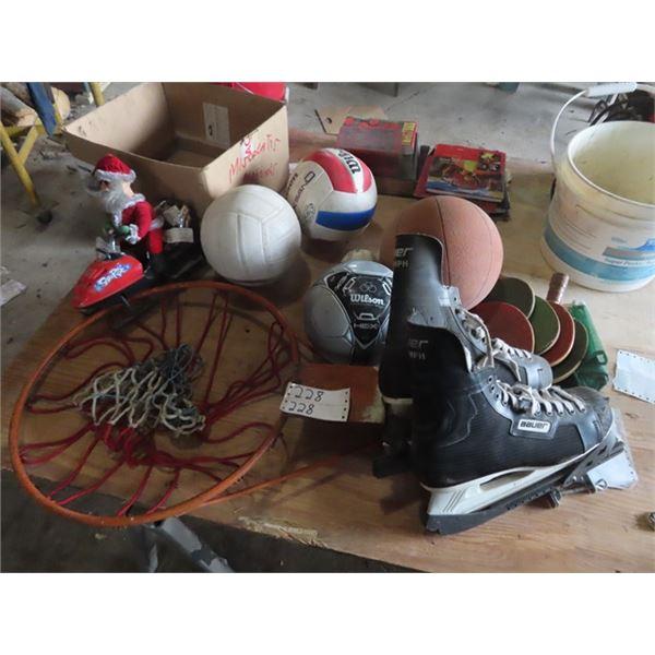 Basketball, Ping Pong Paddles, Basketball Hoop, Ice Skates, & Baseball