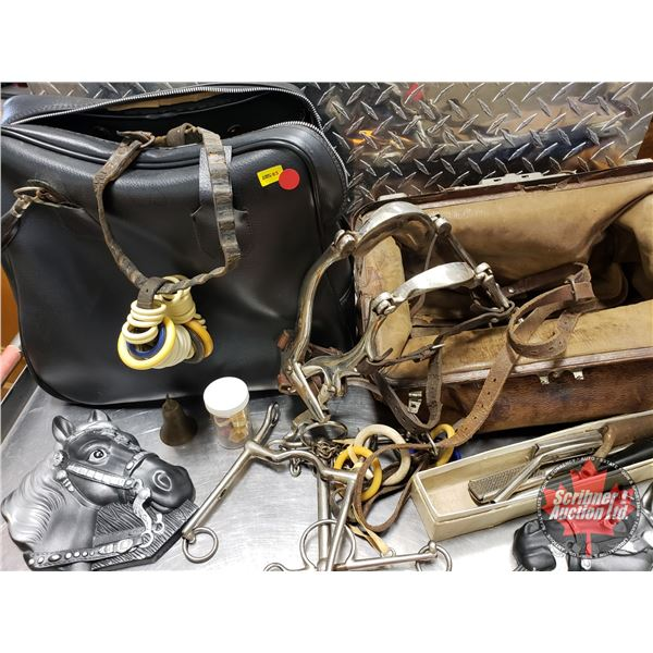 Horse Chalkware, Dentistry, Tack & Leather Bags (2)