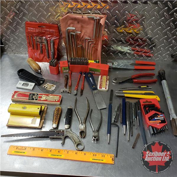 Tray Lot: Screw Extractor Set, Punch Sets, Allen Keys, etc