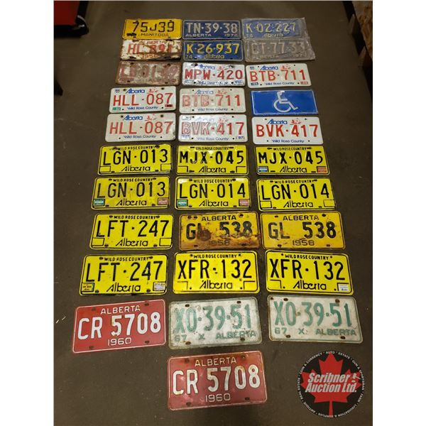 Tray Lot: Assorted License Plates (32) (SEE PICS!)