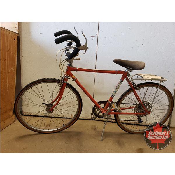 Vintage Deelite Bicycle 10 Speed (SEE PIC)