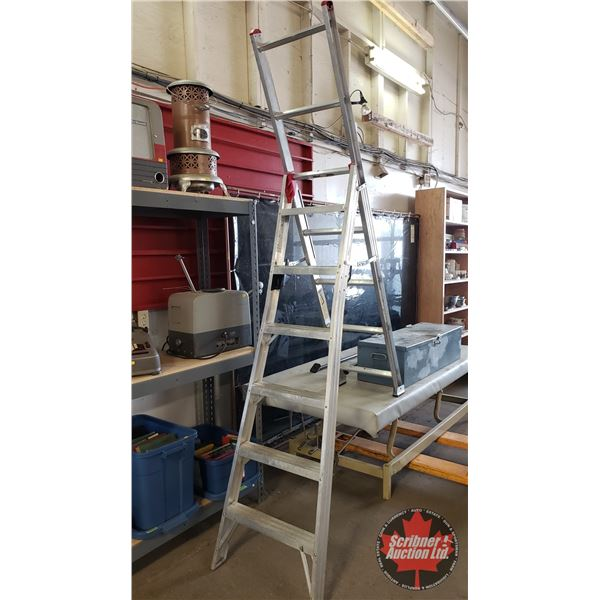 Lite Aluminum 7' Combination Ladder