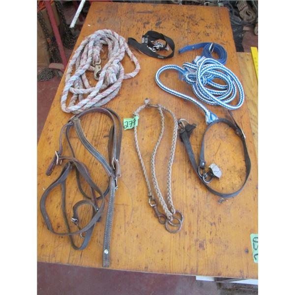 Lead lines, rope, partial halter, etc.