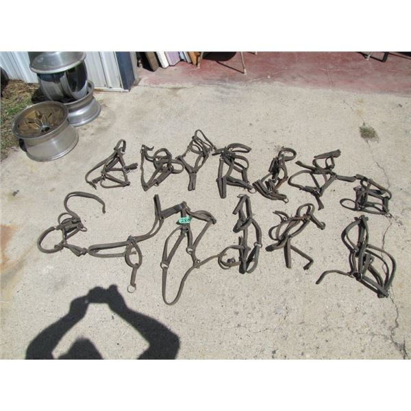 lot of 13 assorted halters
