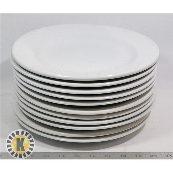 11 LG DINNER PLATES