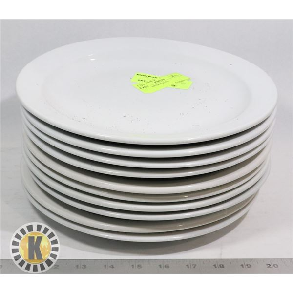 10 LG DINNER PLATES