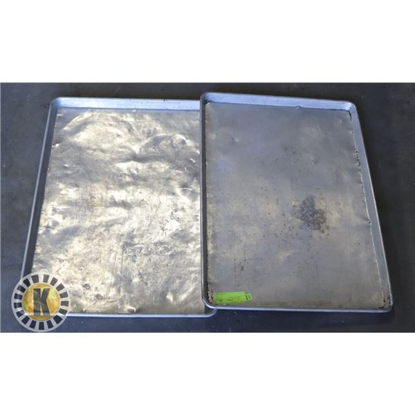 2 LARGE S/S TRAYS