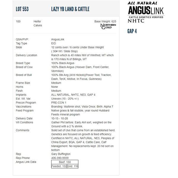 Lazy YB Land & Cattle - 100 Heifers; Base Weight: 625