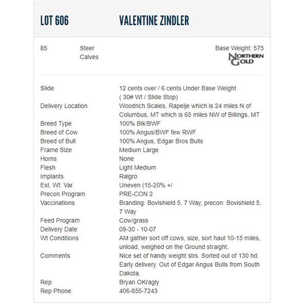 Valentine Zindler - 85 Steers; Base Weight: 590