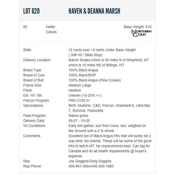 Haven & Deanna Marsh - 85 Heifers; Base Weight: 580