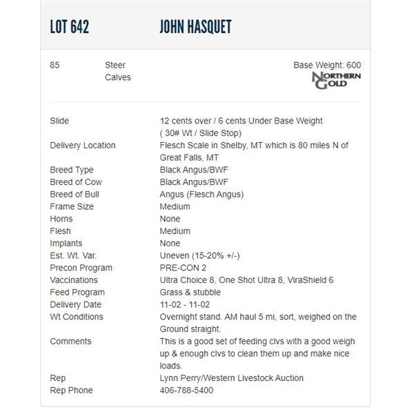 John Hasquet - 85 Steers; Base Weight: 600
