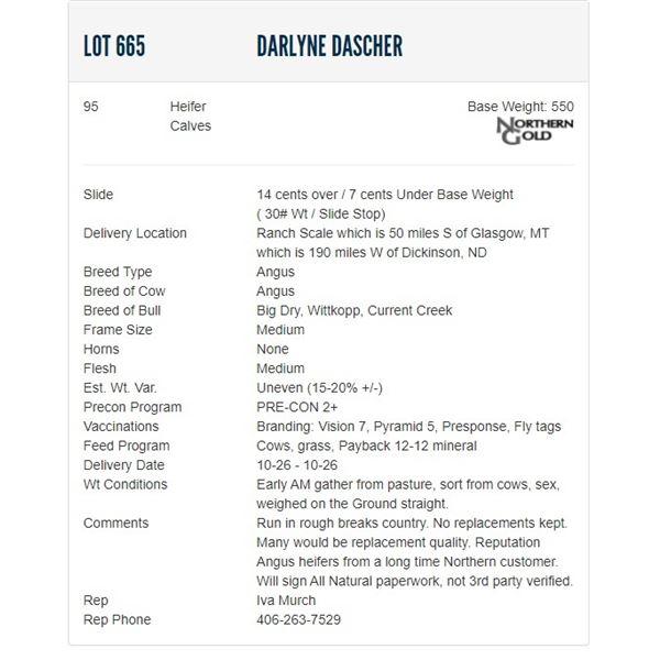 Darlyne Dascher - 95 Heifers; Base Weight: 550