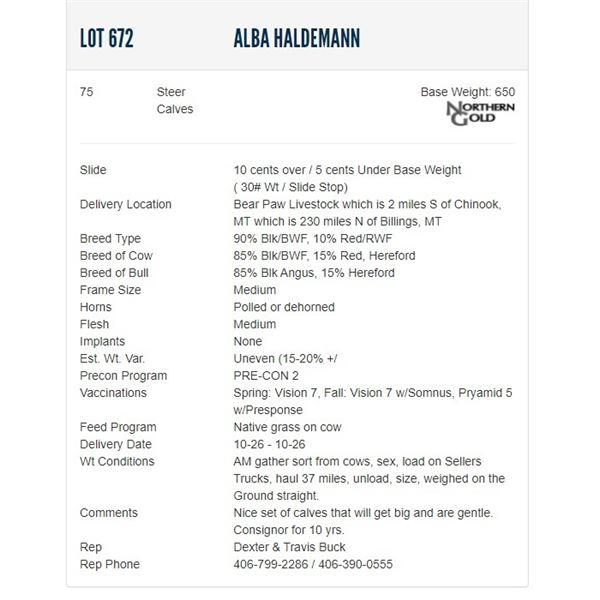 Alba Haldemann - 75 Steers; Base Weight: 650