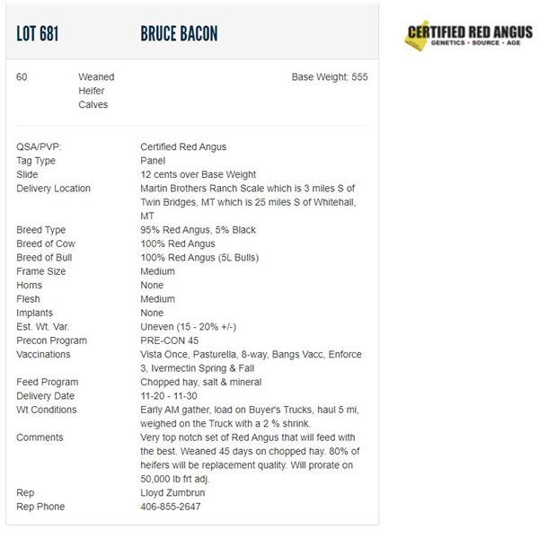 Bruce Bacon - 60 Weaned Heifers; Base Weight: 555